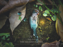 The Legend of Fairy