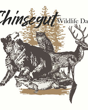 Wildlife day badge.jpg