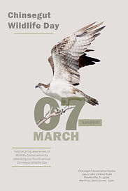Chinsegut Wildlife Day Poster.jpg