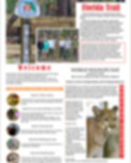 C Observer March 2018 2-1.jpg