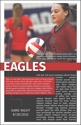 vOLLEYBALL ROSTER-1_Page.jpg