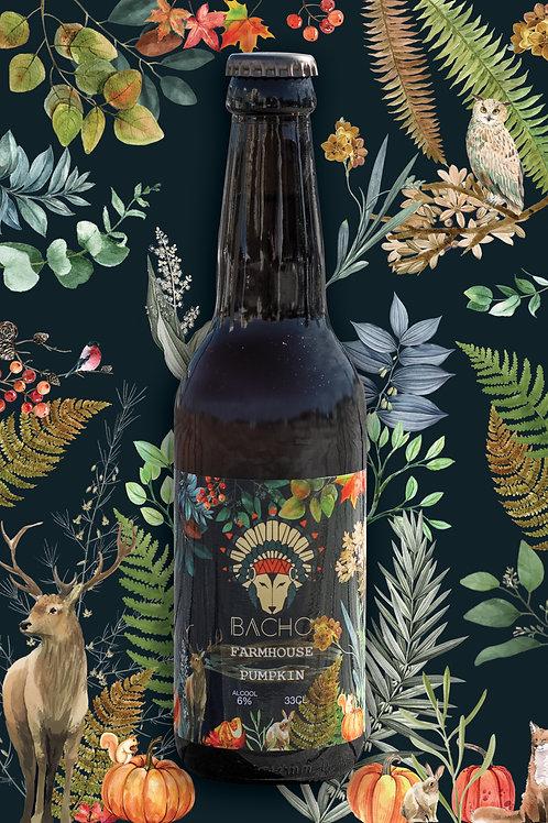 Farmhouse Pumpkin - Bière Blonde à la Citrouille