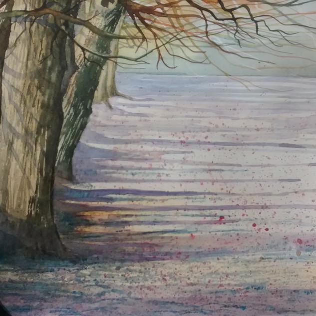 Elizabeth Tomkins- watercolour - Nipnose