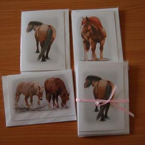 Elizabeth Tomkins -Horsepack2.jpg
