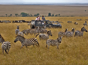 Destinations-in-Tanzania-The-Serengeti-National-Park.jpg
