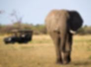 East-Africa-Tourism-1.jpg
