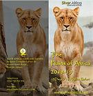 Cover Plains of Africa.jpg