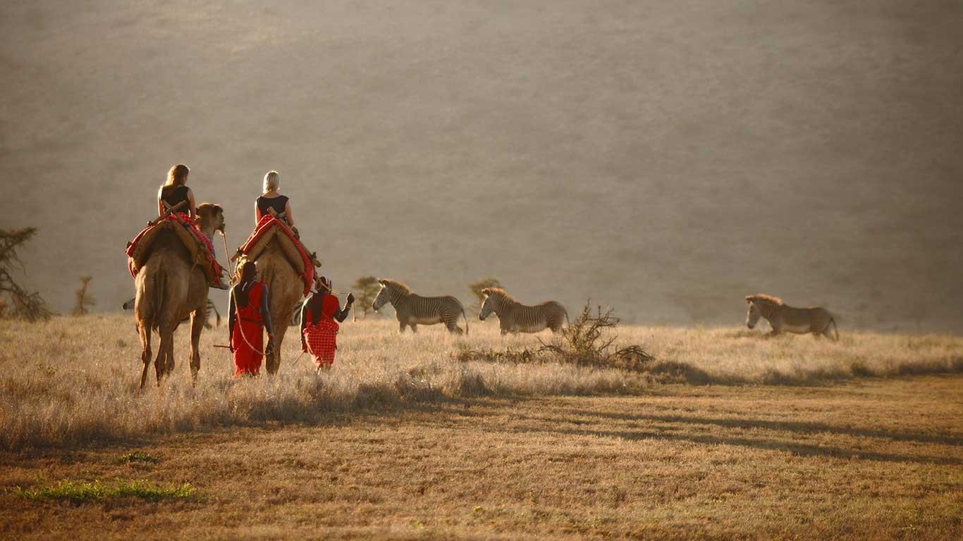 Lewa-Safari-Camp---Camel-Trekking.jpg