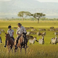 tanzania-honeymoon.jpg