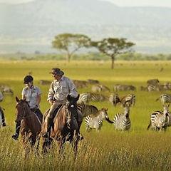 tanzania-honeymoon.jpg