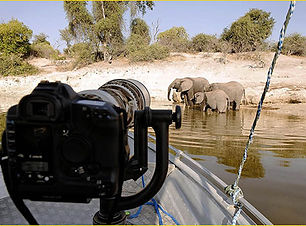 camera-and-elephants.jpg