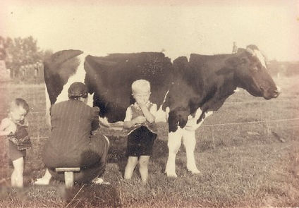 Aan het melken rond 1941 met haar zonen Hugo en Leo Noordermeer.