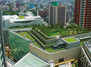Green Roof 01.bmp