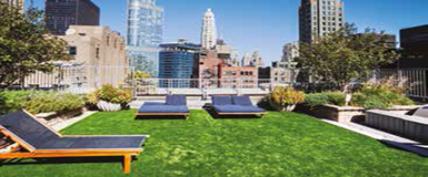 Green Roof 02.png