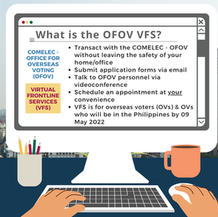 ANNEX B - What is the OFOV VFS.png