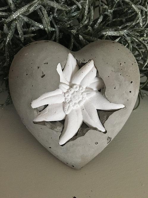 Edelweiss Herz mit grosser Blüte