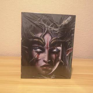 Divinity Original Sin 2 Collectors Edition