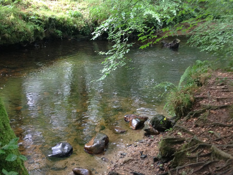 We are looking for a Project & Catchments Officer to join our team