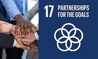 SDG 17 - Partnerships for the Goal.jpg