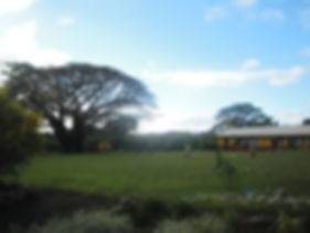 The primary and secondary school of the Middlebush region on Tanna