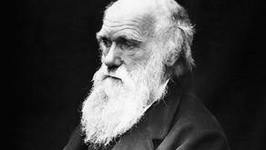 Lazarus Worms put Darwin's Theory on Rocky Ground