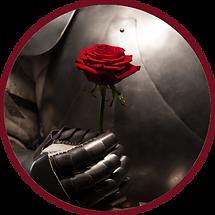 redbordered-knight&rose.png