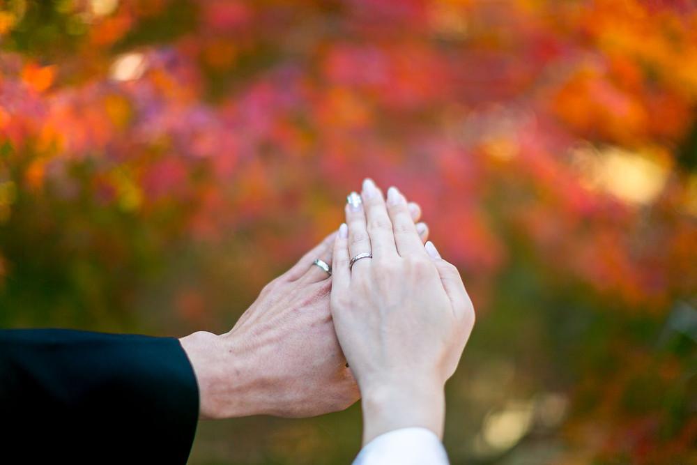 浜松城公園で紅葉と撮影した結婚指輪の写真
