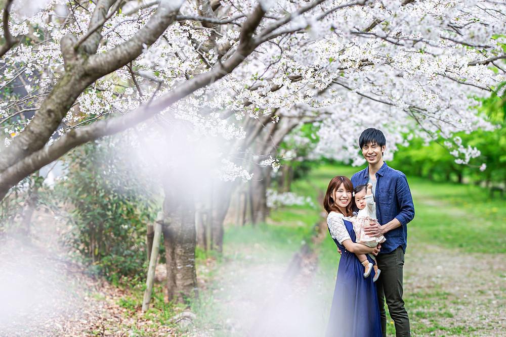 浜松市内の桜並木で出張カメラマンが撮影した家族写真