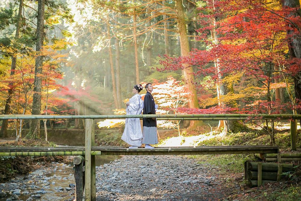 小國神社で紅葉の時期に撮影した結婚式前撮り写真