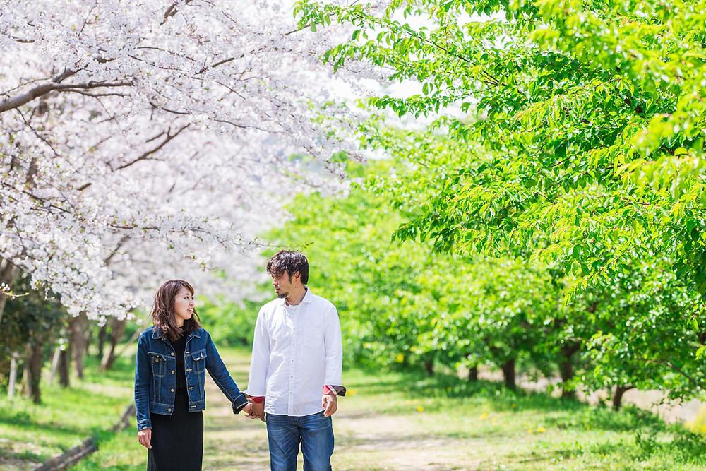 浜松市の東大山の桜で撮影した結婚10周年アニバーサリー記念フォト
