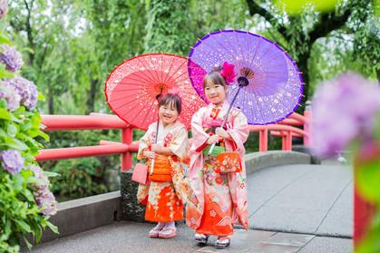 三嶋大社で紫陽花に囲まれながら和傘を持つ7歳の女の子と3歳の女の子の七五三ロケーション撮影