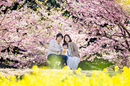 sakura-family-location-photo-100.jpg
