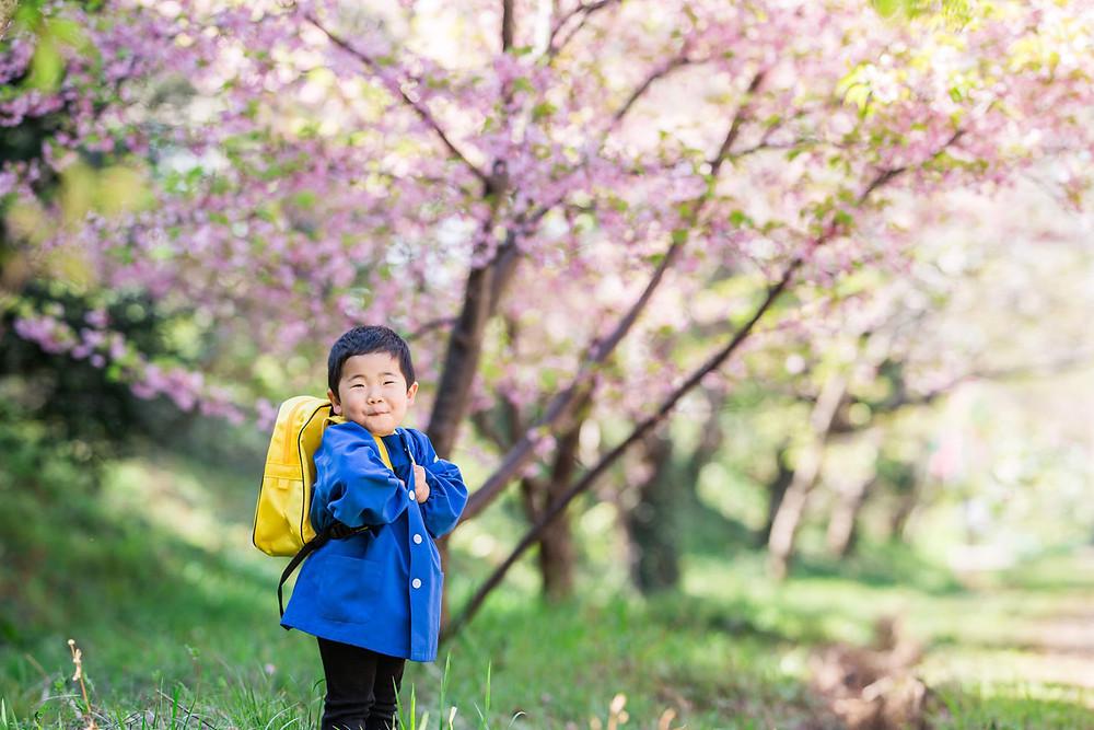 浜松市東大山の河津桜で撮影した入園記念フォト