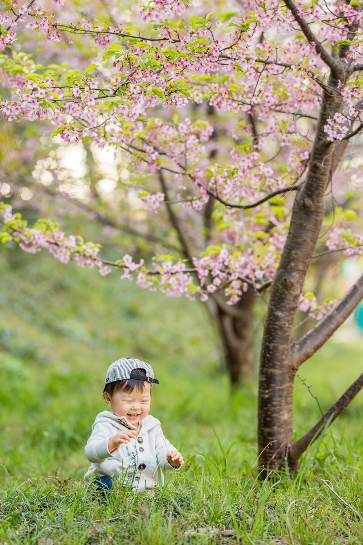 浜松市東大山の河津桜で撮影した子供写真