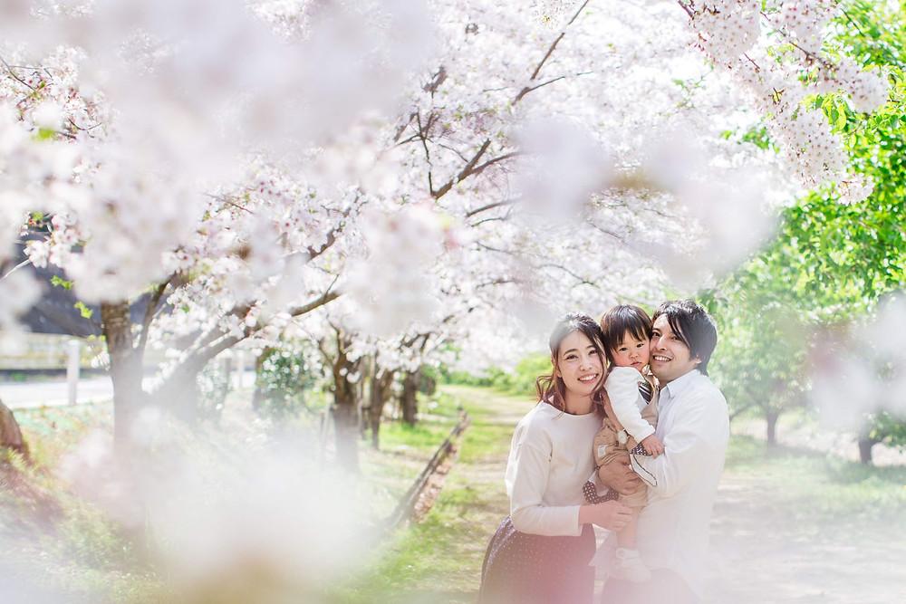浜松の桜並木で撮影したファミリーフォト