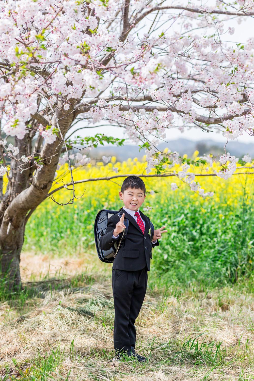 掛川市そよかぜ広場で桜と菜の花の時期に撮影した入学記念写真