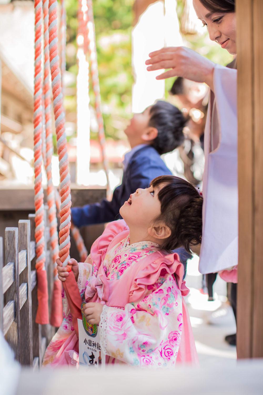 小國神社へ七五三詣りをする3歳女の子の写真