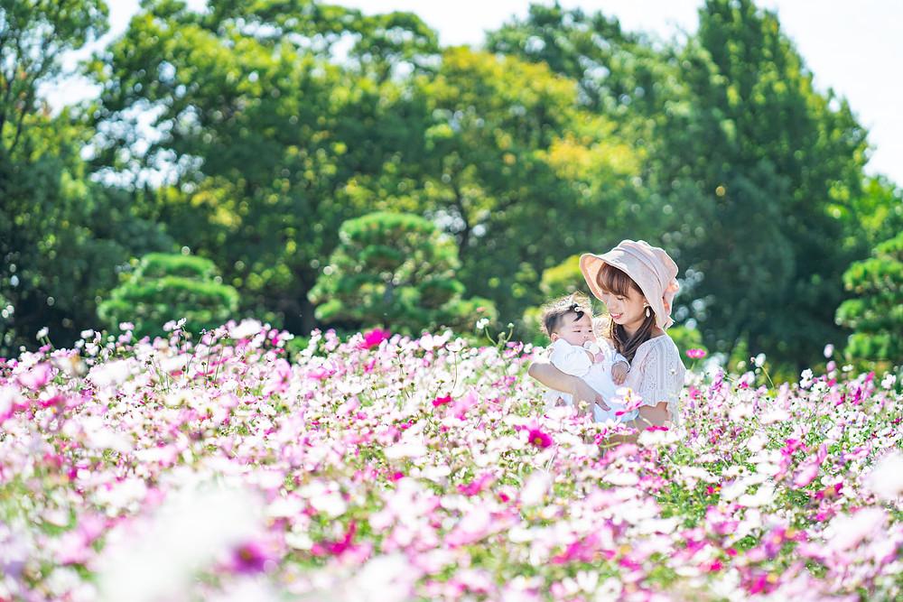 浜松市のカメラマンが撮影した浜名湖ガーデンパークのコスモス畑で撮影したファミリーフォト