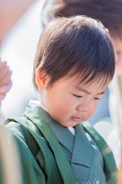 七五三詣りをする3歳男の子の写真