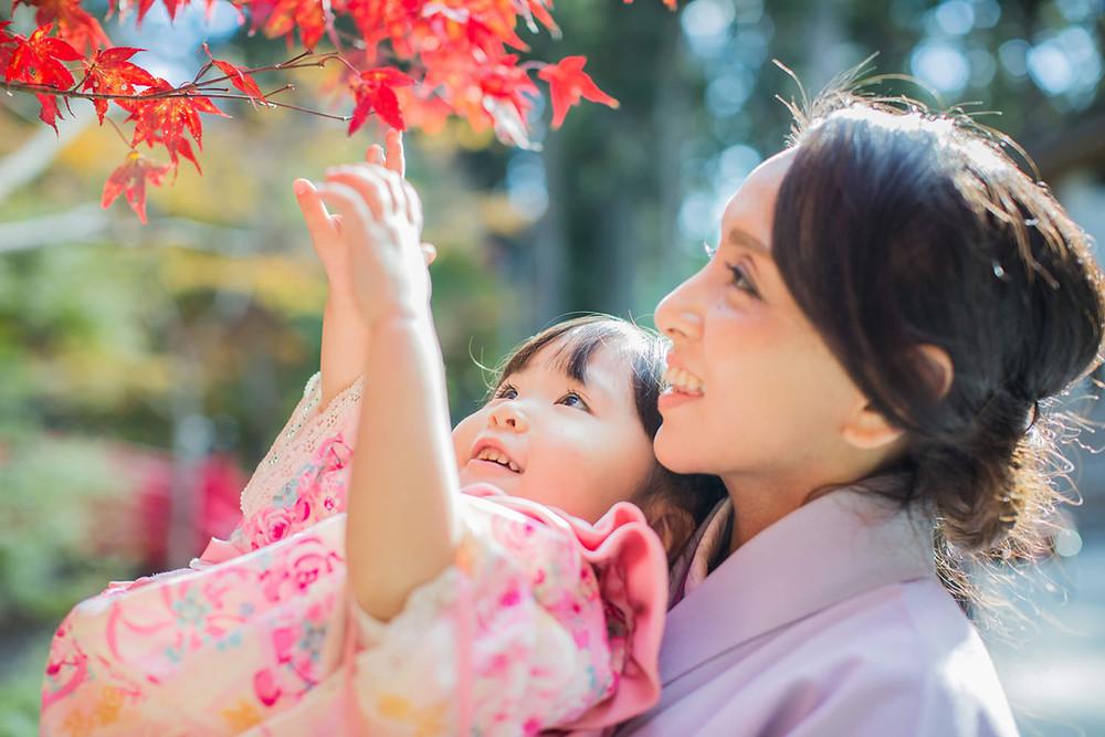 小國神社で紅葉の時期に撮影した七五三写真