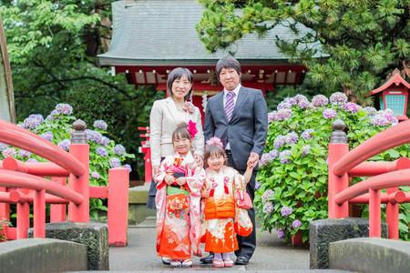 三嶋大社で七五三を祝う4人家族。満開の紫陽花を背景に七五三ロケーション撮影