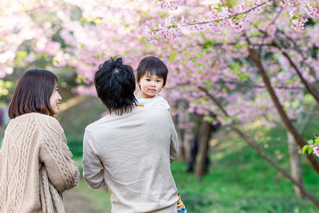 sakura-family-location-photo-108.jpg