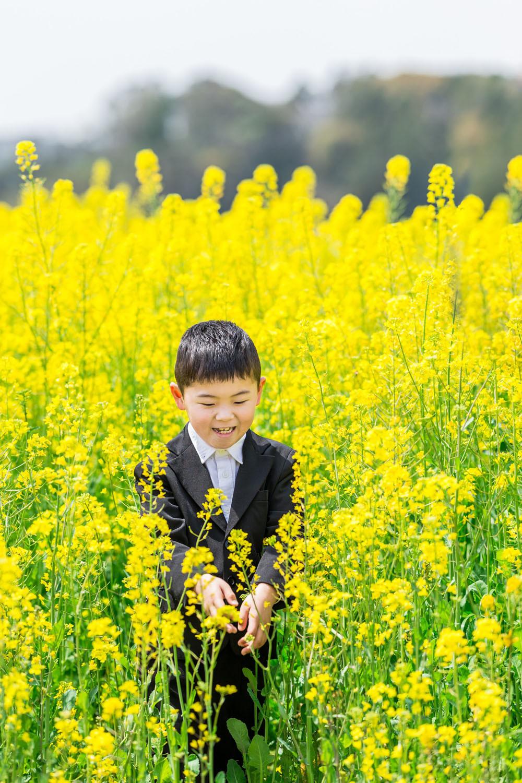掛川市そよかぜ広場の菜の花畑で撮影した入学記念写真