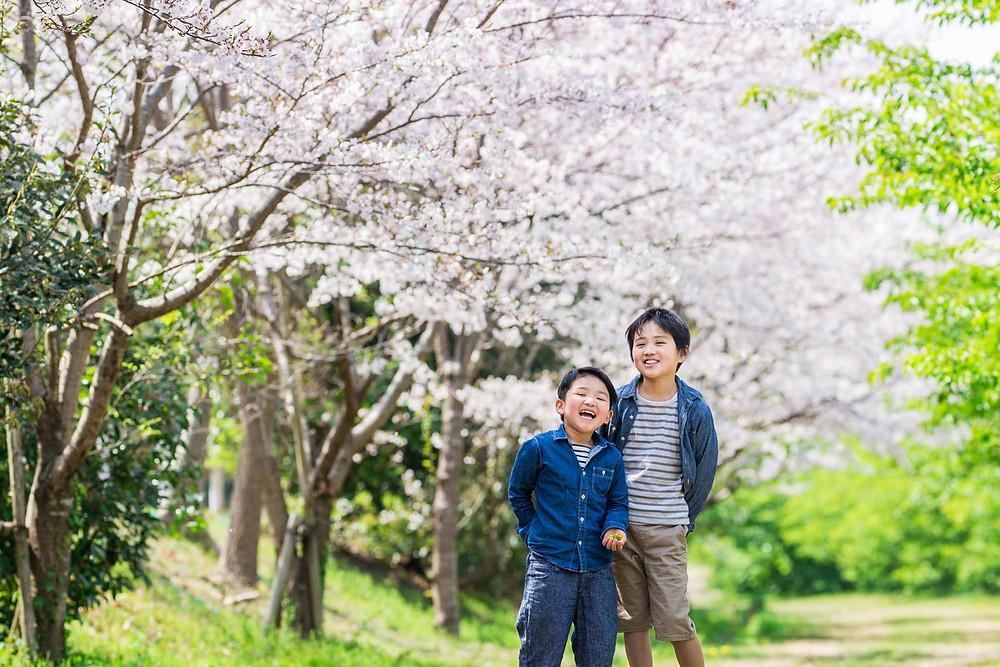 浜松市の東大山の桜で撮影したファミリーフォト