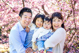 sakura-family-location-photo-079.jpg