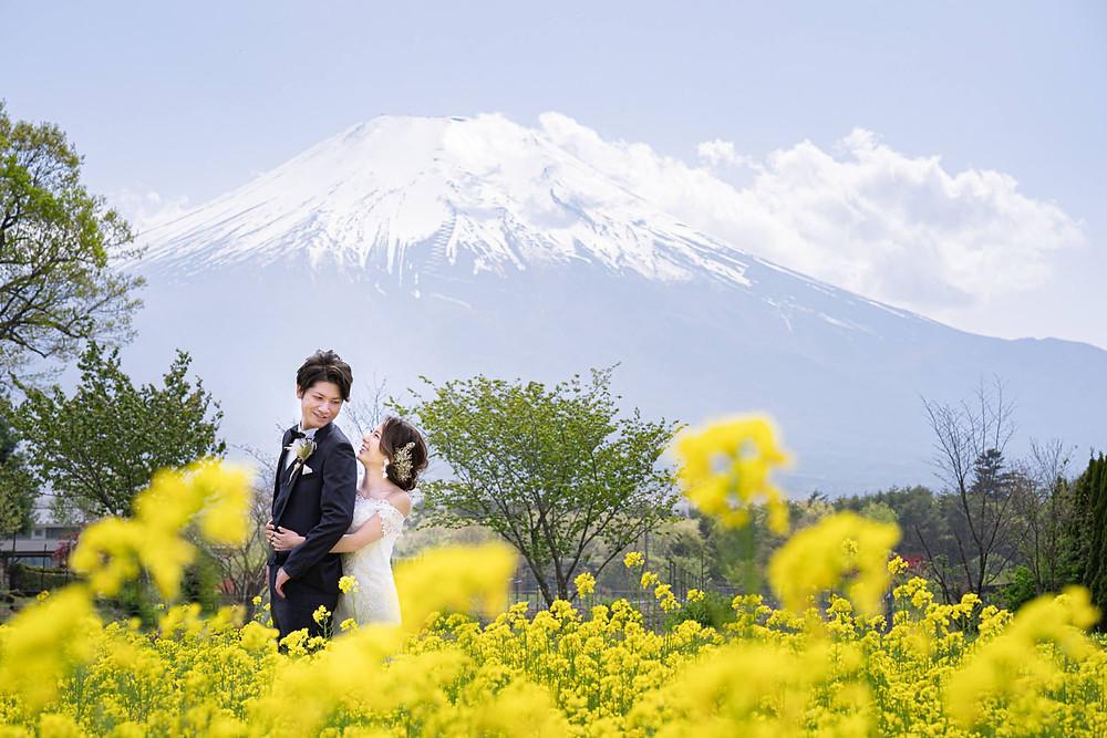 山中湖の花の都公園で富士山を背景に浜松の出張カメラマンが撮影した菜の花畑での結婚式前撮り