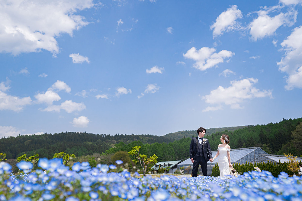 山中湖の花の都公園で浜松の出張カメラマンが撮影したネモフィラ畑での前撮り