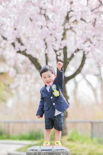 入学記念に撮影した桜ロケーションフォト