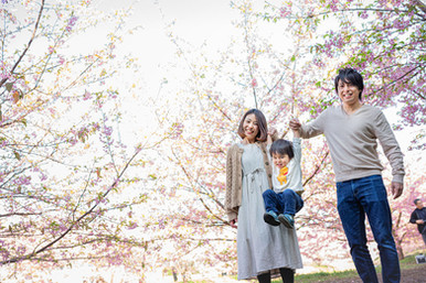 sakura-family-location-photo-110.jpg