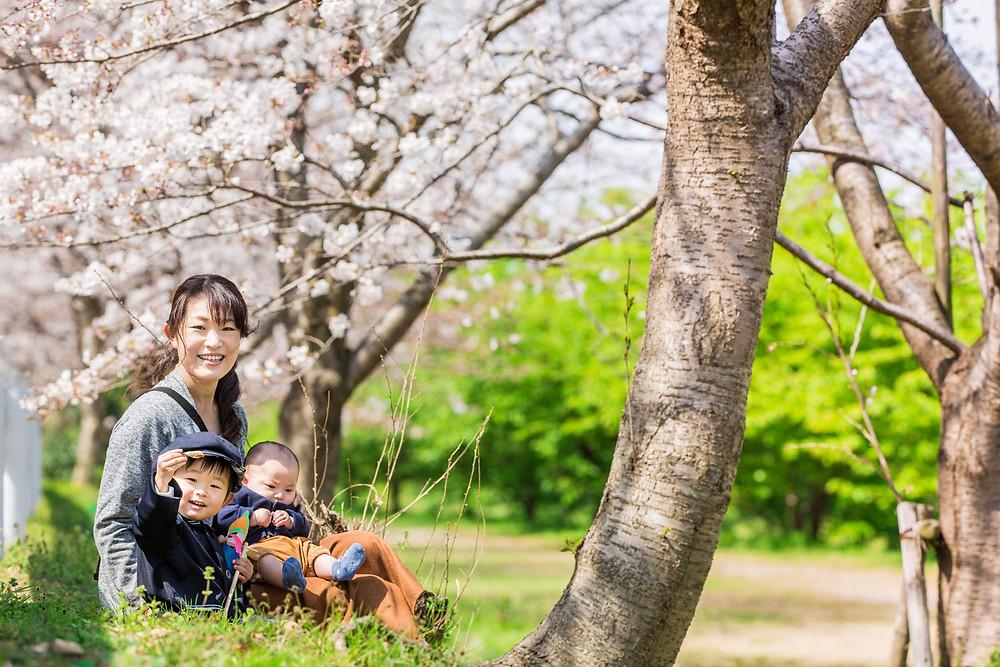 浜松市の東大山の桜で撮影した入園記念ファミリーフォト